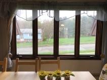 Dining Room -Bronze Window Film