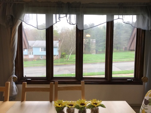 Dining Room -Bronze Window Film